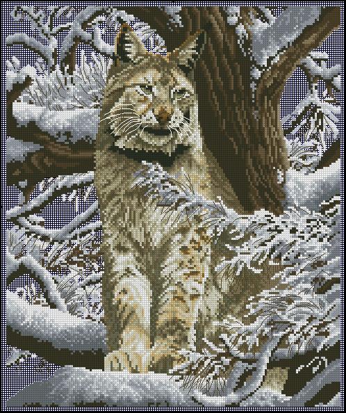 DMC_K5256_Siberian Lynx