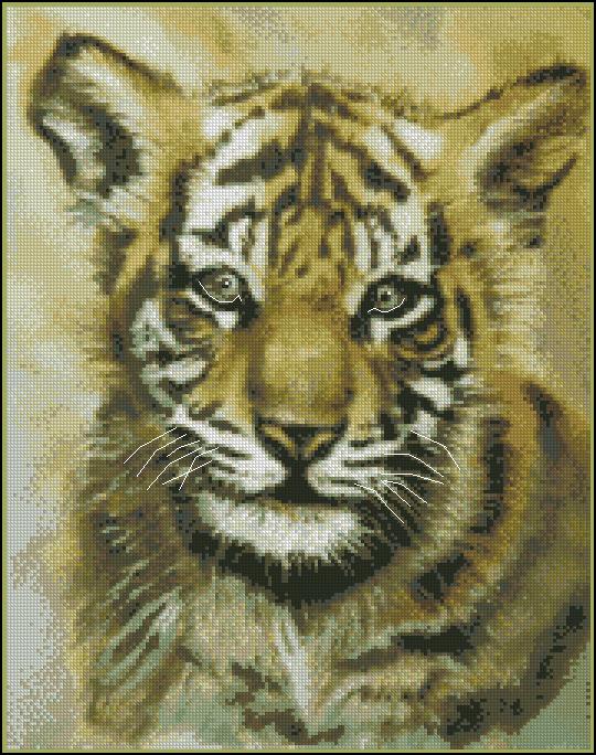 KK JW-008 Baby Tiger