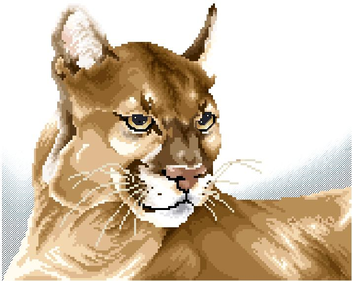 portrait of a cougar