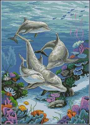 Танцующие дельфины — dancing dolphins dimensions