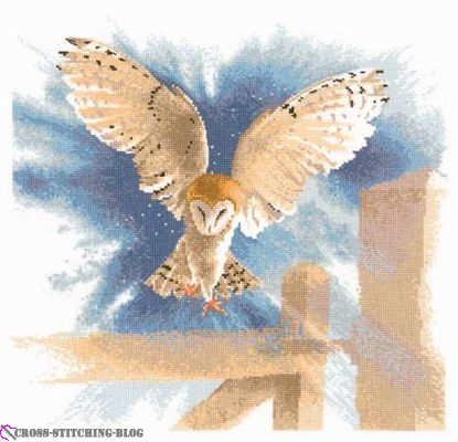 FFOF483-Owl_in_Flight