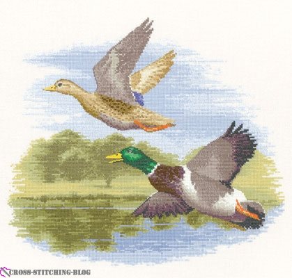 Heritage-Clayton-Flights of Fancy-FFDF651-Mallard_Ducks_in_Flight