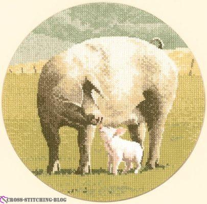 ampt449 Pig Tales